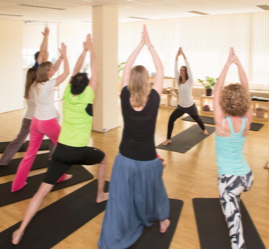 Yogacentrum De Bron